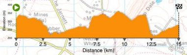 An elevation graph of the course showing steep climbs and descents